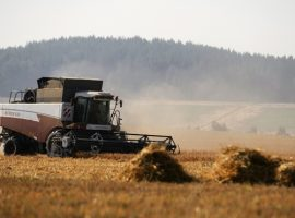 Власти предложат новую земельную реформу